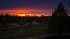 Sunrise over Redgate Park