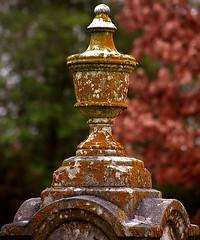 """Cincinnati - Spring Grove Cemetery & Arboretum """"Vase Blending In"""""""