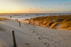 Strandopgang Petten