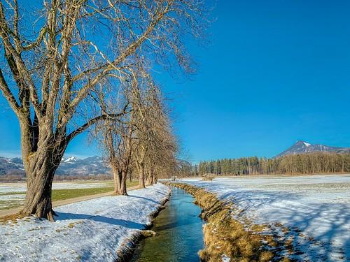 Ebbsbach creek with trees in winter near Ebbs in Tyrol, Austria