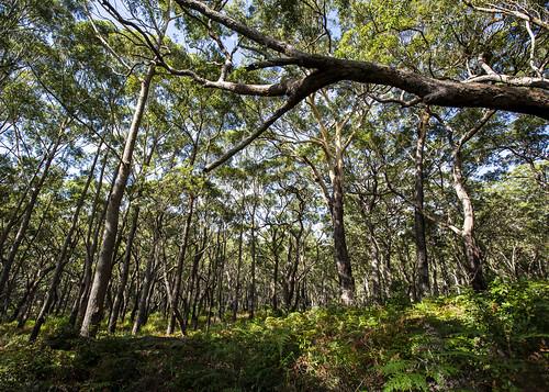 Booderee National Park