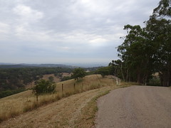 Dirt Road in the Hills