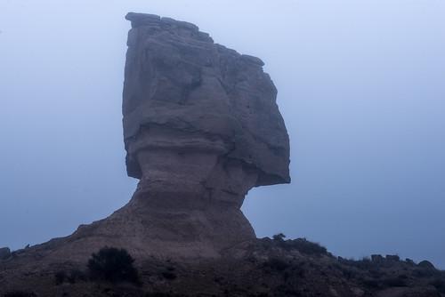 DAV_7614L Torrollon entre neblina