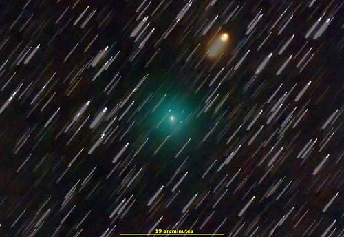 C/2019 Y4 ATLAS in Ursa Major February 29, 2020 UTC