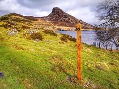 Llwybr Llynoedd Cregennan Path.
