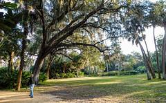 Washington Oaks Gardens State Park, FL_2020