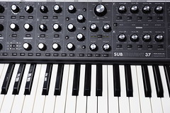 Moog Subsequent 37 detail