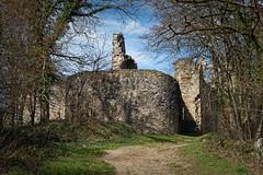 Allier - Château de Montgilbert