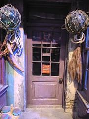 Apothecary door in Diagon Alley