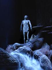 Centaur in the Forbidden Forest