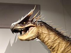 Hungarian Horntail dragon model
