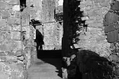 Castle Ruins Dunluce
