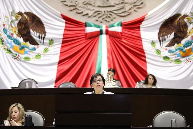 27/02/2020 Tribuna Dip. Beatriz Rojas Martínez