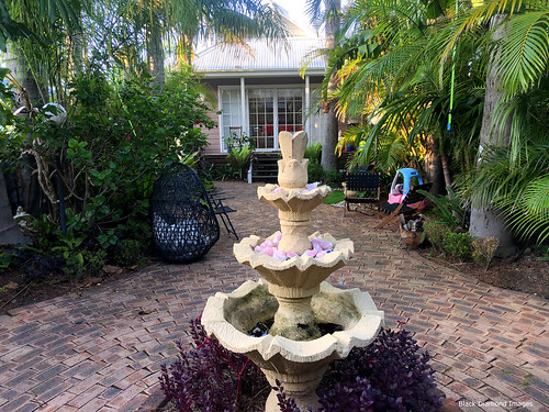 Courtyard of 'Lakeside Bungalow', a Boutique B&B, Marks Point, Lake Macquarie, Newcastle