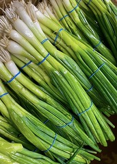 Day 63/366; Green Onions