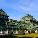 Wien-Schönbrunn, Palmenhaus / Palm house