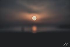X Sun X