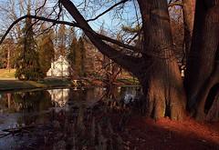 """Cincinnati - Spring Grove Cemetery & Arboretum """"Burnet Mausoleum At Evening"""""""