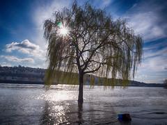 Koblenz, Rhein