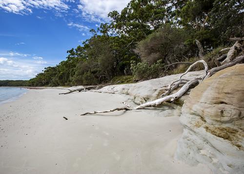 Bristol Point's White Sand