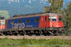 SBB Cargo, 620 086-9 : Hochdorf