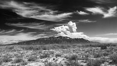 Sandias Under New Mexico Skies