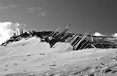 Ensaio em p&b: cercas das dunas de Pinhal