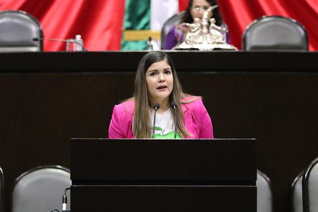 05/03/2020 Tribuna Dip. Merary Villegas Sánchez
