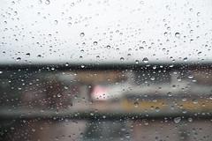 It's raining again winter