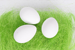 With eggs laying on a grass