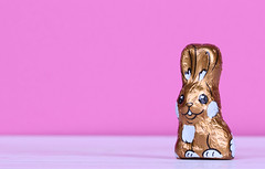 Chocolate easter bunny with pink background
