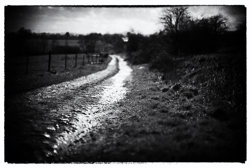 Leica M Noctilux 50mm f/0.95