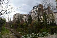 Petit-Montrouge