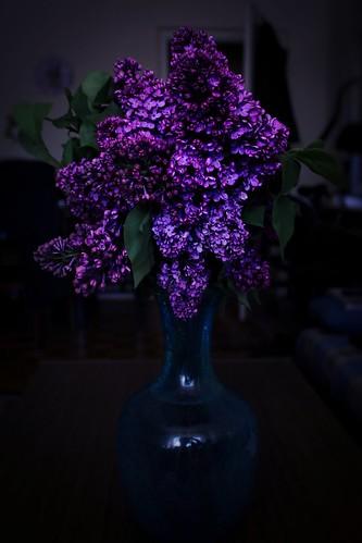 Spring perfumes 💕�🌸
