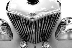 GKY802 1948 Jaguar detail mono Lincs rally 170819