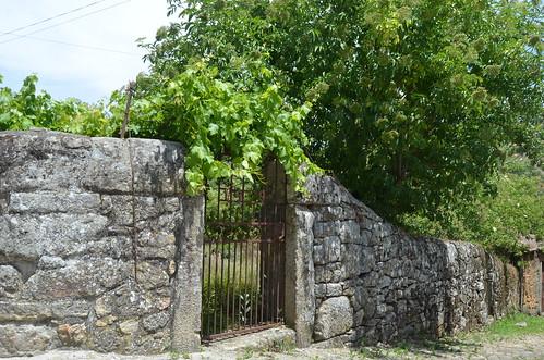 Forgotten fences
