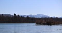 Lake panorama III