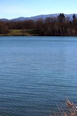 Lake panorama IV