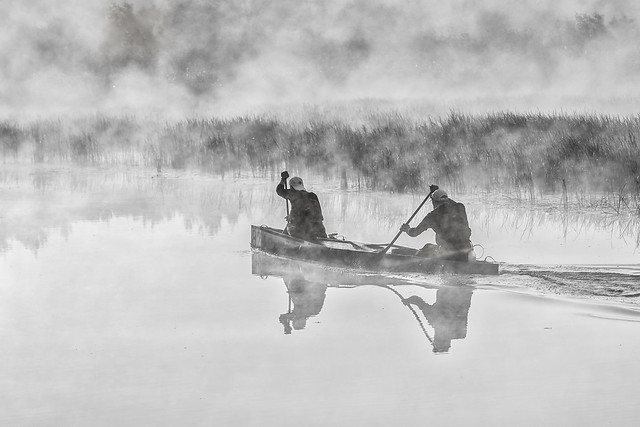 Canotage par matin brumeux