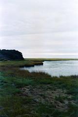 Cape Code Landscape