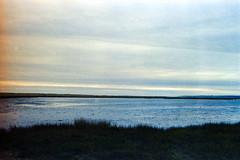 Cape Cod Landscape