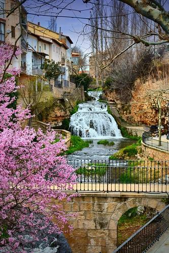 Primavera castellana 2