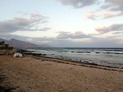 Dahab shore at sunset