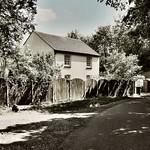 A Quiet Corner Colny Heath Lane by Dave Minty