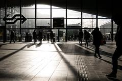 Rotterdam - Central Station