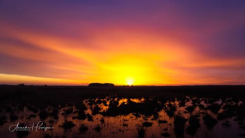 Kleurrijke zonsopkomst I