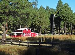 Arizona Ranch, Coconino National Forest 2015