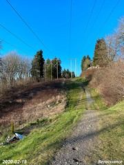 Hollyhills Trail