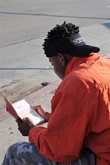Afternoon Bus Stop Reader