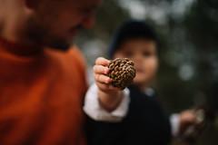 Little kid holding an acorn.